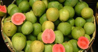 guava_id
