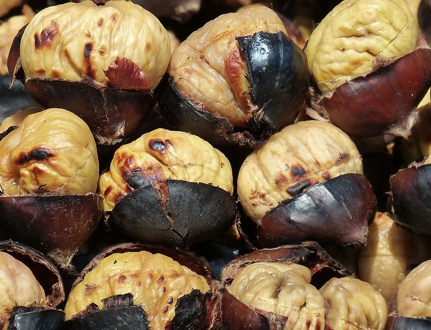 chestnuts-789518_960_720