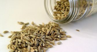 1024px-fennel_seed