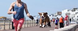 Sporty, které můžete provozovat se psem
