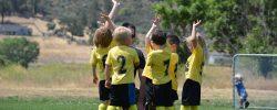 Sporty, které jsou ideální pro děti