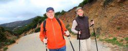 Trekingové hole jsou skvělými pomocníky při chůzi